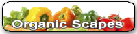 Organic Scapes