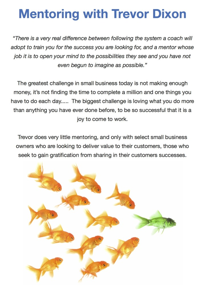 Mentor One Pager